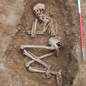 Human skeleton uncovered at archaeological excavation site at the Wellcome Genome Campus